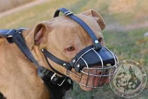 Most Comfortable Dog Collars Order Adjustable Wire Basket Pitbull Muzzle Dog Training