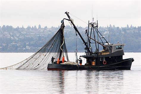fishing boat usa royalty free fishing boat pictures images and stock