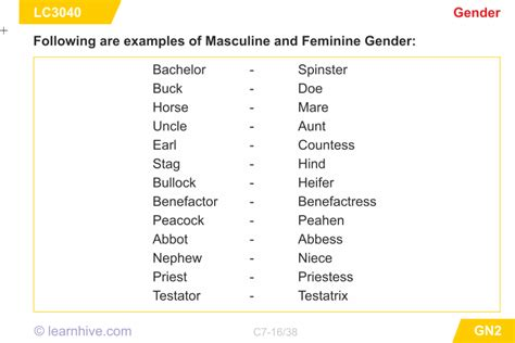 learnhive cbse grade 7 english genders lessons