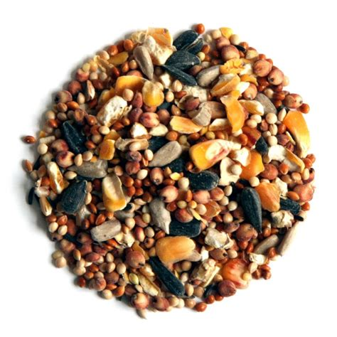 premium wild bird food farbrook farm