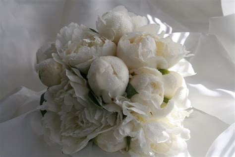 White Wedding Bouquet Flowers by Ideas For Wedding Bouquets