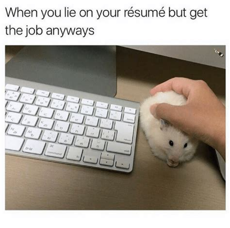 dorable got away with lying on my resume photo exle