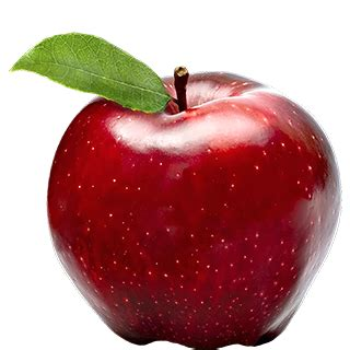 Apple Office by Fresh Apple Red Delicious 500 G Buy Online