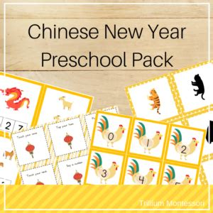 new year preschool new year preschool activities trillium montessori