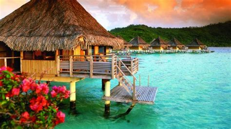 island bungalow vacations bora bora mystically beautiful