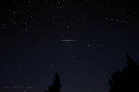 see it 2017 s perseid meteor shower astronomy