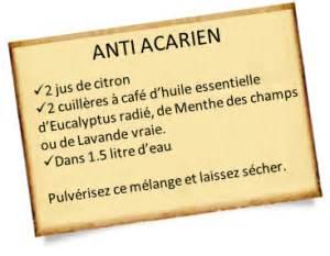 anti acariens naturel 224 pr 233 parer chez soi