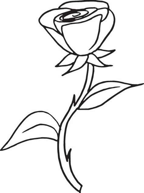 free coloring pages of a rose