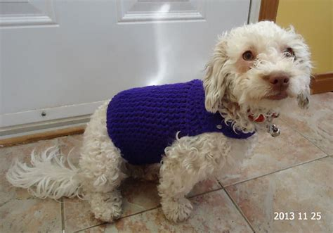pattern for dog sweaters free crocheted dog sweaters crocheted clothes for dogs