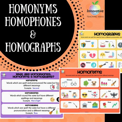 printable homophone poster homonyms homophones homographs poster series by