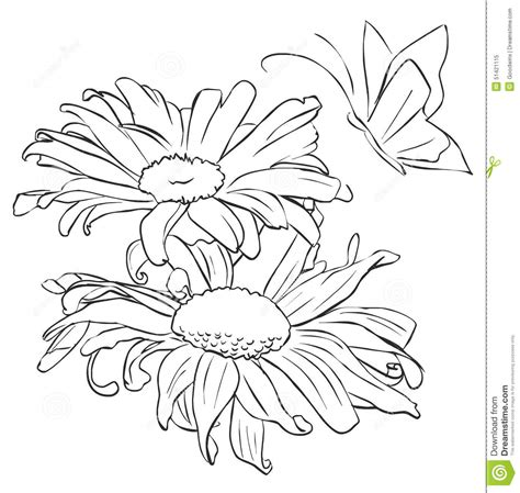 Outline Of Flowers And Butterflies by Outline Flower For Painting Stock Image Image Of Flower Coloring 51421115