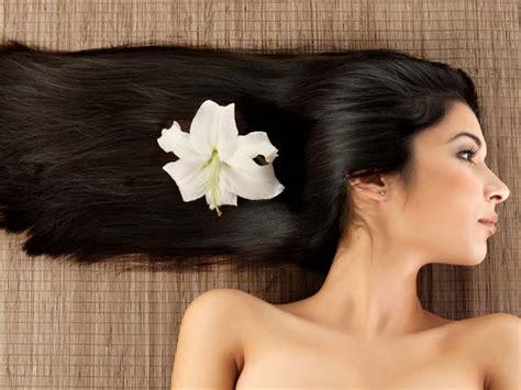 olio di lino alimentare dove si compra l olio di semi di lino per i capelli dove si compra il