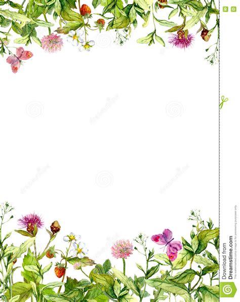 fiori della primavera fiori della primavera fienarola dei prati farfalle bordo