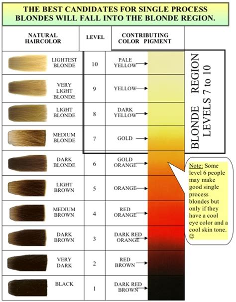 what is a single process color the haircolor expert january 2011