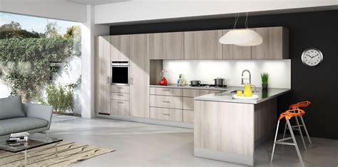 Modern Rta Kitchen Cabinets Modern Rta Cabinets