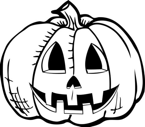 drawing of a pumpkin for drawings of pictures pumpkin drawing