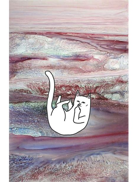 cat ripping wallpaper 30 best ripndip images on pinterest backgrounds iphone