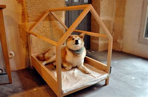 Luxury Cat Beds Simple Structure Dog Houses Diy Dog House