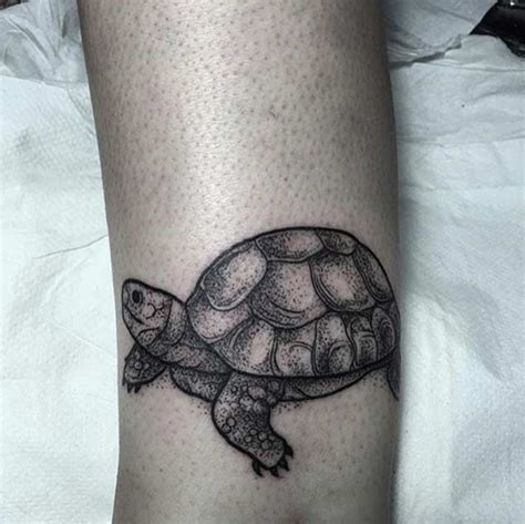 black tortoise tattoo great arm pictures part 67 tattooimages biz