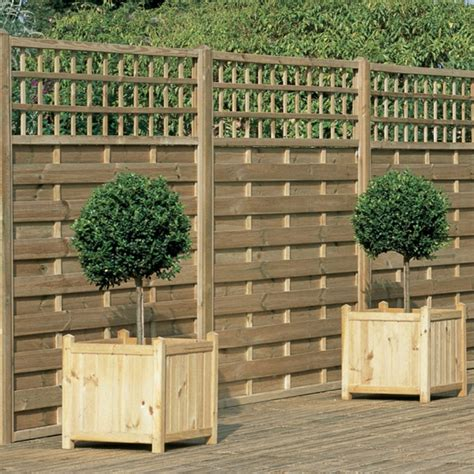 moderner sichtschutz für garten zaun pflanzen idee