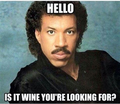 Wine Meme - 118 best images about wine memes on pinterest funny