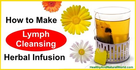 Lymphatic System Detox Herbs by How To Make Lymph Cleansing Herbal Infusion