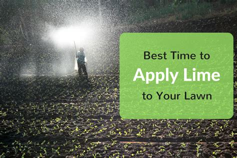 When Is The Best Time To Use A Detox Tea by Best Time To Apply Lime To Your Lawn Robotic Cordless