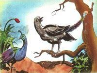 Gamis Bulu Merak 2 gagak dan burung merak dunia dan