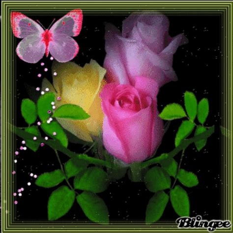 imagenes rosas para ti rosas para ti picture 126427915 blingee com