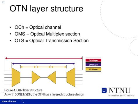 optical multiplex section ppt optical transport network otn powerpoint