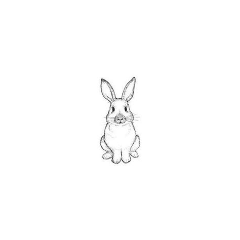 cute bunny tattoo designs rabbit images designs
