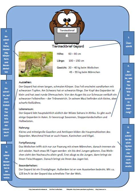 muster tierbeschreibung - Muster Tierbeschreibung