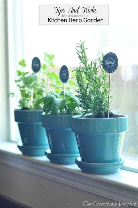 Window Sill Hydroponics 1000 Ideas About Kitchen Herb Gardens On