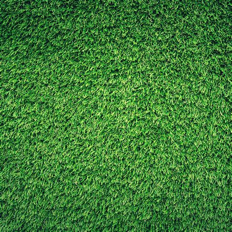 image pattern grass nj44 grass green pattern nature