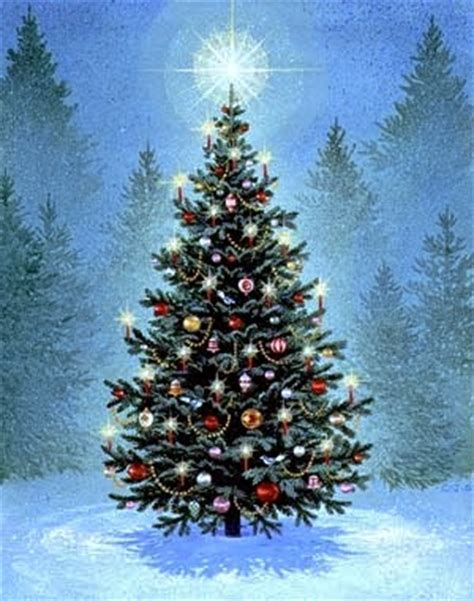 vale do mago o pinheiro 193 rvore do natal