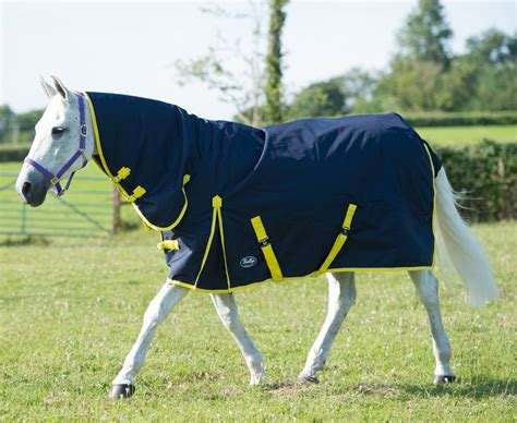 medium weight turnout rugs sale medium weight 200g turnout rug combo neck cover fast tack direct