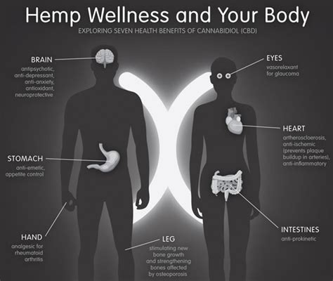 cbd hemp the secret cure of the human books infographics arizona marijuana news and info page 5