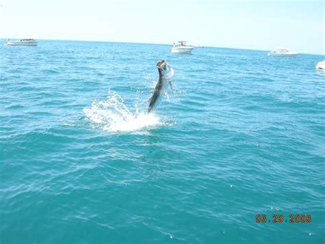 deep sea fishing boats near me fishing charters near me all about fish
