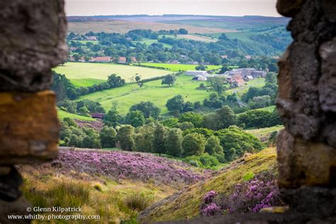 Landscape Photography York Moors York Moors In Bloom Whitby Photography