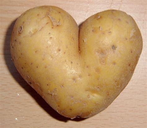 Potato Means the valentines cupid s arrow potato