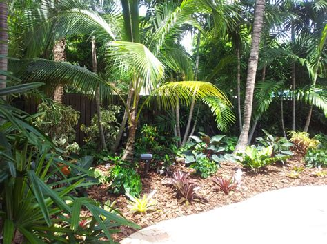 tropical paradise backyard makeover tropical