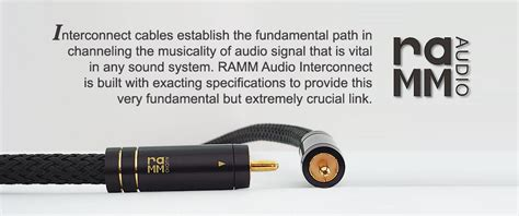 Rca Ramm S3 25m ramm audio the of audiophile