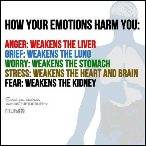 how do colors affect your mood fun fact lol how emotions affect your body wellness pinterest