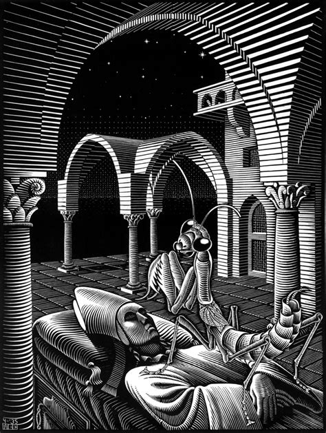 M C Psycho m c escher s artwork is similar to dmt visuals and