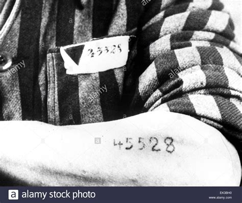 concentration c tattoo former inmate of auschwitz birkenau oswiecim german