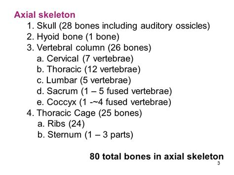 6 Auditory Bones by Skeleton Is Divided Into Ppt Video Online Download