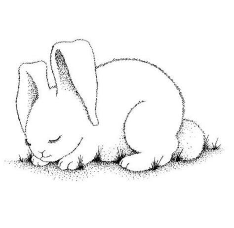 imagenes no realistas faciles de dibujar conejos para colorear