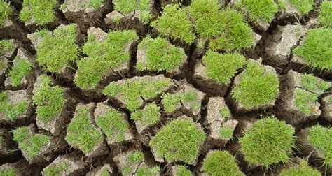 soil investigation report sle sle berlin craiip