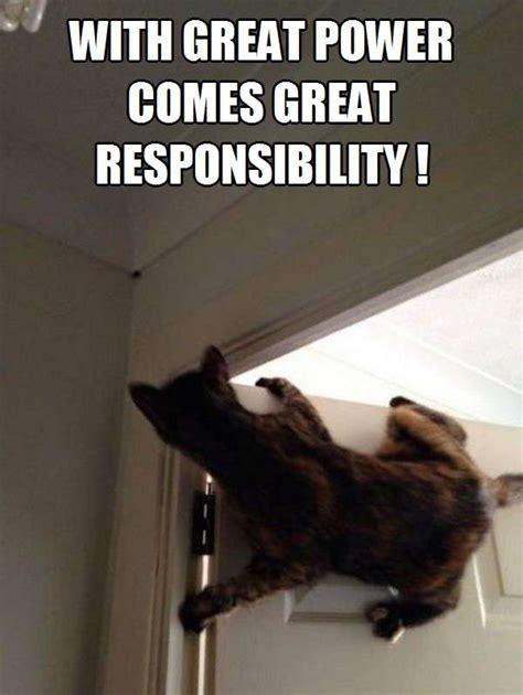 With Great Power with great power comes great responsibility kittyworks