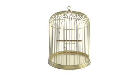 Bird Cage Stock Images Image 24110704 Cage Stock Footage Video Shutterstock